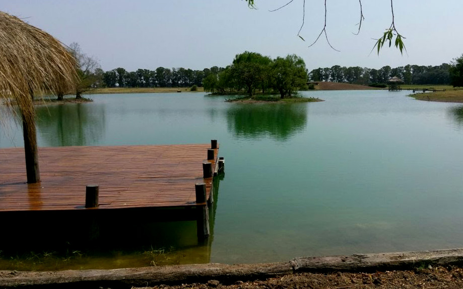 ¿Conviene sembrar truchas en mi lago?